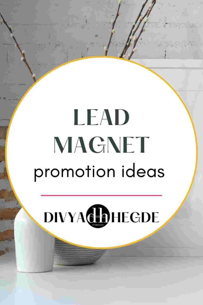 how-to-promote-lead-magnet-image